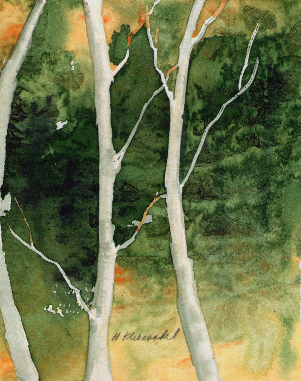 Birches I an original watercolor by Helen R Klebesadel