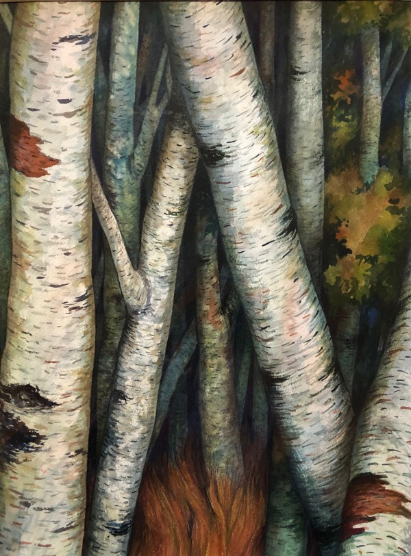 Birches III an original watercolor by Helen R Klebesadel