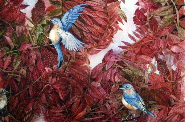 Bluebirds Love Sumac I by Helen R Klebesadel
