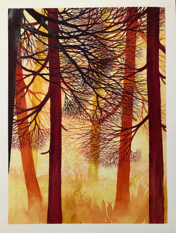 Cedar Path II by Helen R Klebesadel