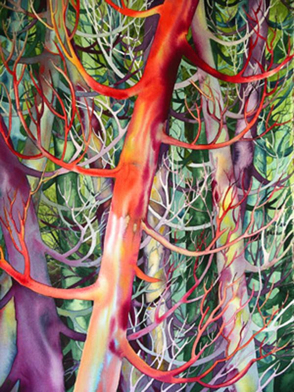 Cedar Dance I by Helen R Klebesadel