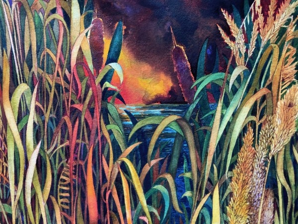 Fall Cattails II an original watercolor on paper by Helen R Klebesadel
