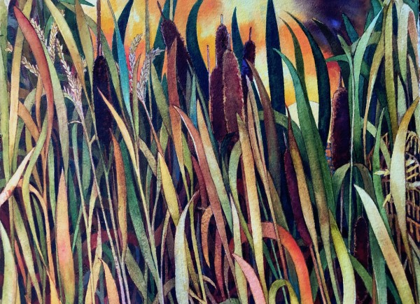 Fall Cattails an original watercolor by Helen R Klebesadel