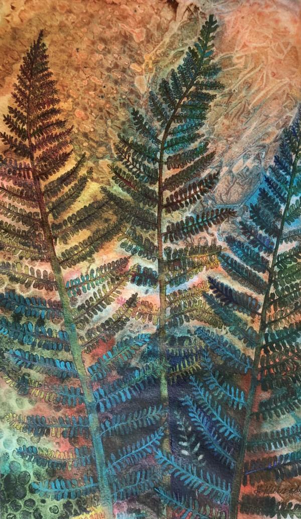 Ferns I by Helen R Klebesadel