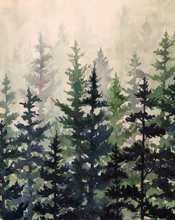 Fir Forest in Mist by Helen R Klebesadel