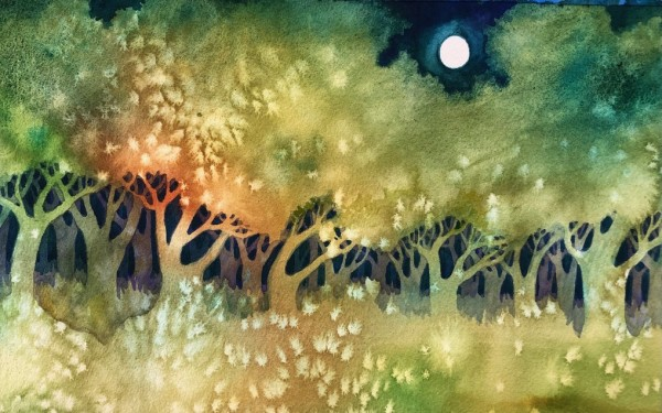 Night Magic by Helen R Klebesadel
