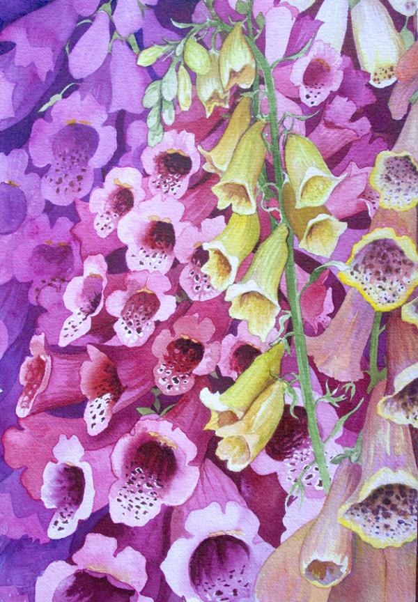 Foxglove I by Helen R Klebesadel