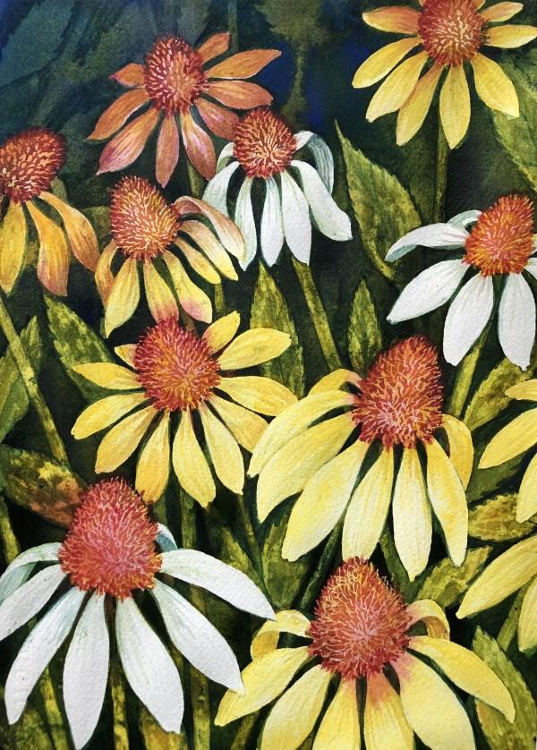 Garden Daisies I by Helen R Klebesadel