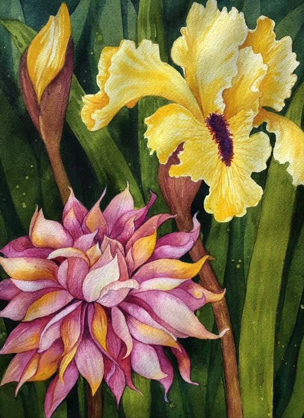 Garden Iris and Dahlia by Helen R Klebesadel