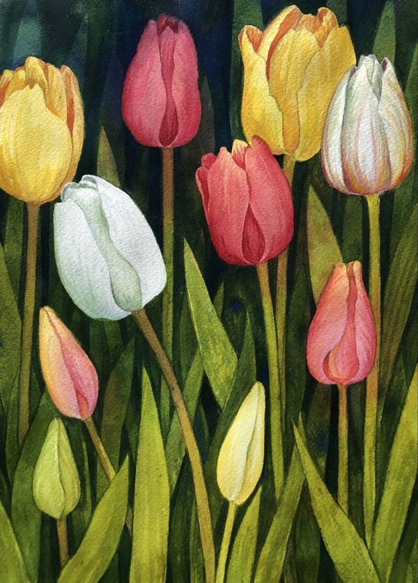 Garden Tulips by Helen R Klebesadel
