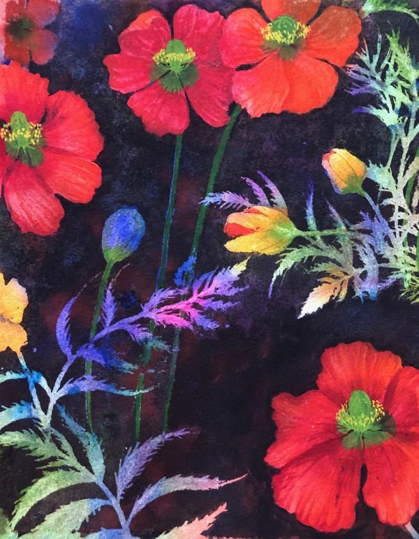 Fire Poppy I by Helen R Klebesadel