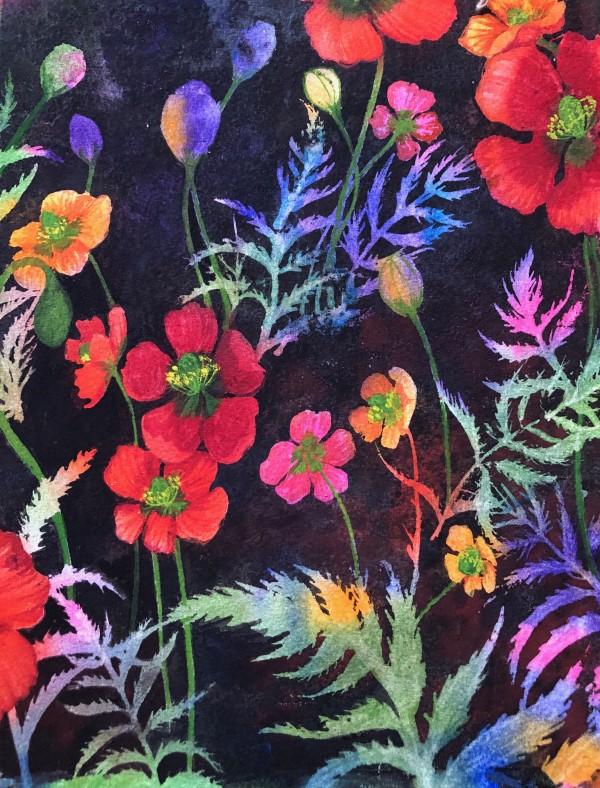 Fire Poppy II by Helen R Klebesadel