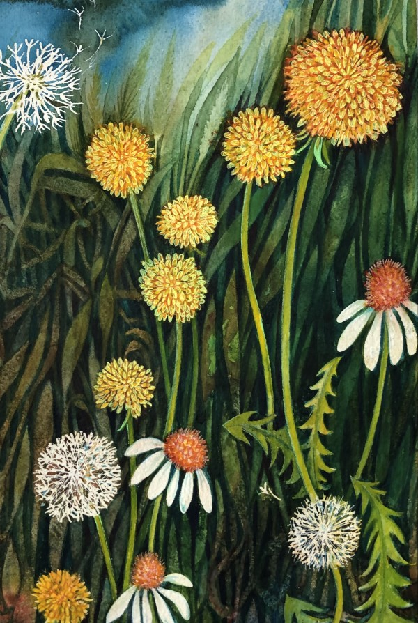 Dandelions II by Helen R Klebesadel