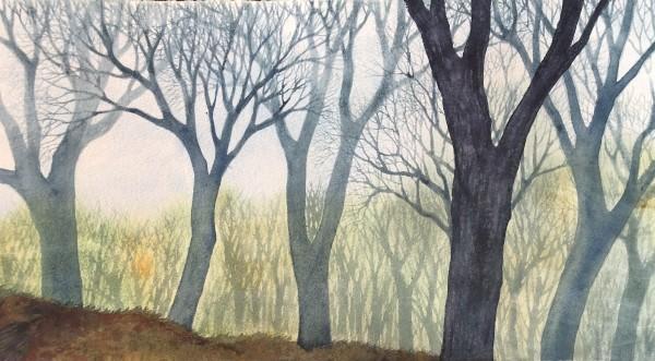 Oak Grove by Helen R Klebesadel