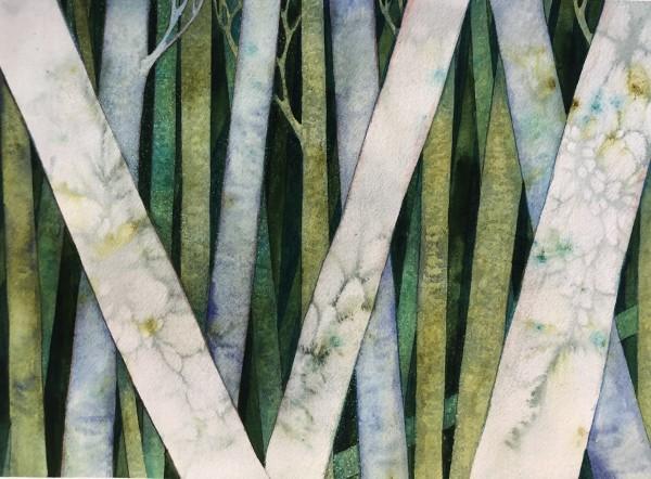 Birch Woods III by Helen R Klebesadel
