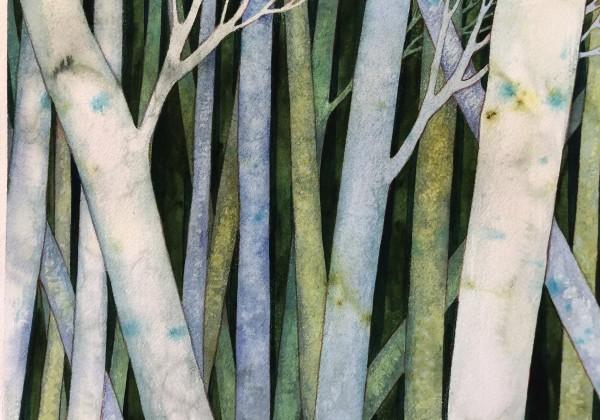 Birch Woods II by Helen R Klebesadel