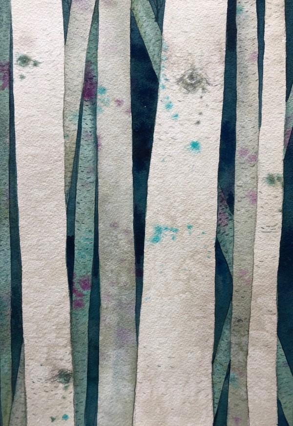 Birch Woods IV by Helen R Klebesadel