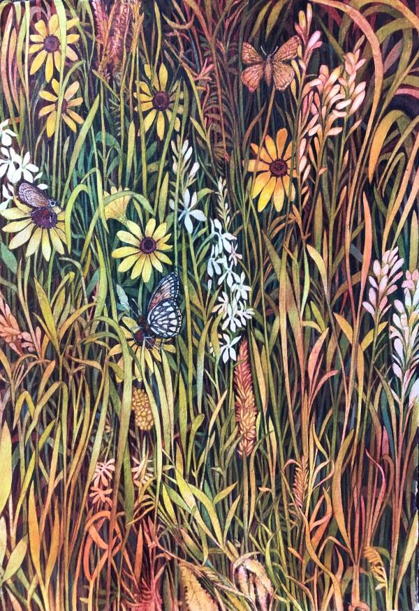 Pollinator Prairie Grasses I:  Regal Fritillary and Dakota Skipper by Helen R Klebesadel