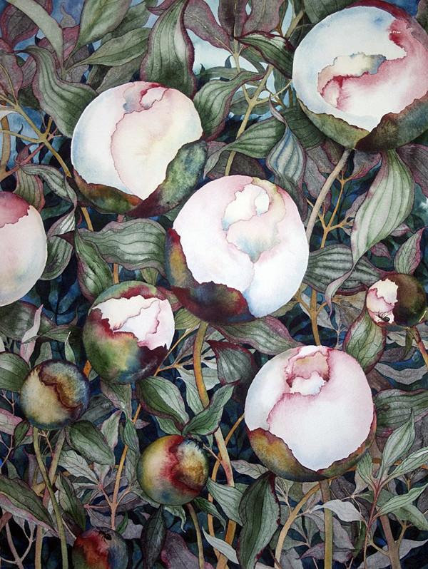 Ants Love Peonies by Helen R Klebesadel