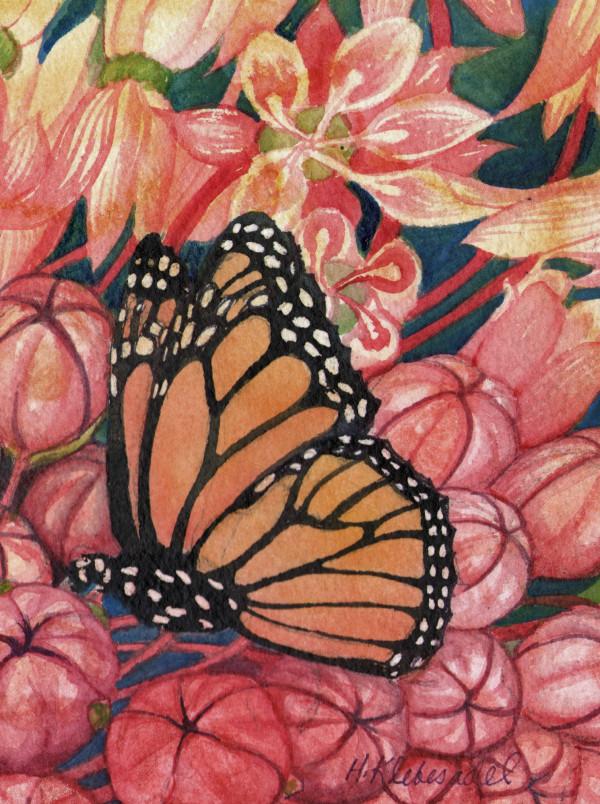 Monarch Study an original watercolor by Helen R Klebesadel