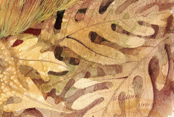 Oak Leaves V and original watercolor by Helen R Klebesadel