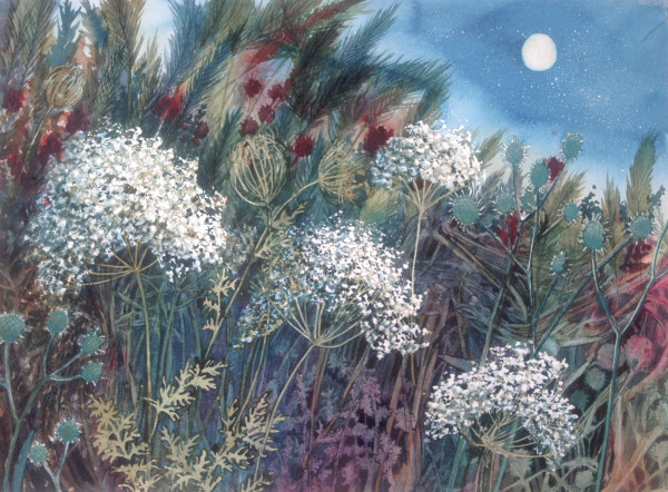 Queen Ann's Lace by Night by Helen R Klebesadel
