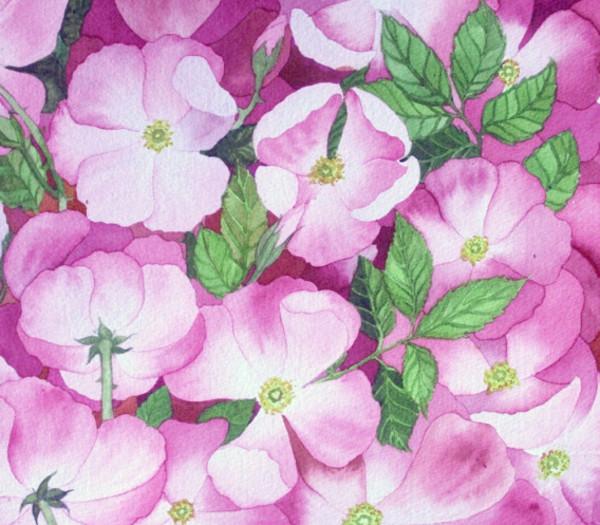 Briar Rose II by Helen R Klebesadel