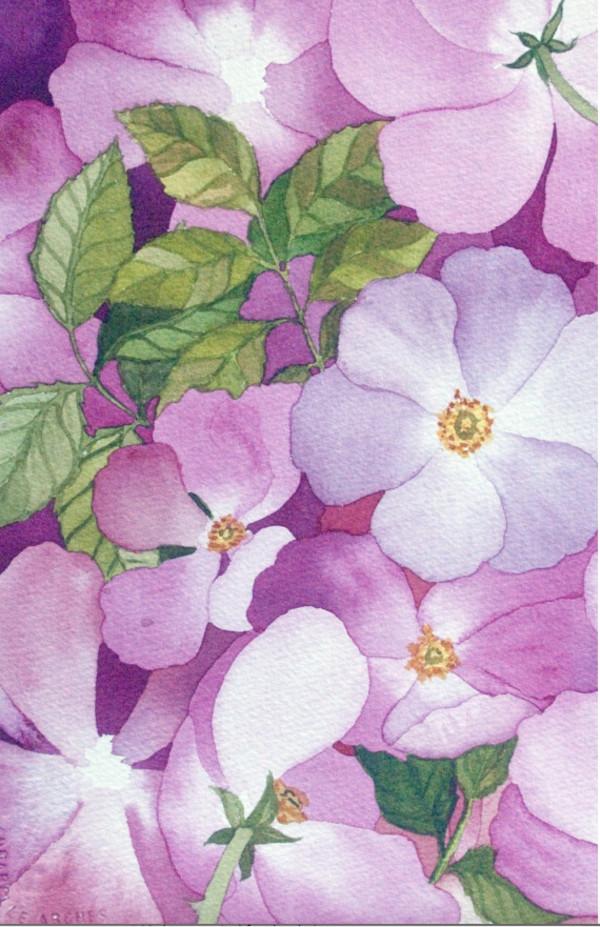 Briar Rose I by Helen R Klebesadel