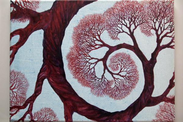 Spiral Branch Study I by Helen R Klebesadel