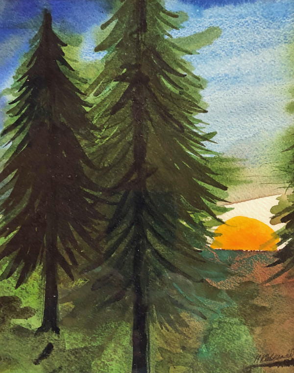 Sunset Pines Study III by Helen R Klebesadel