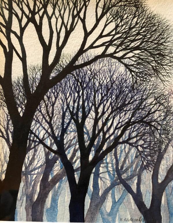 Tree Study II by Helen R Klebesadel
