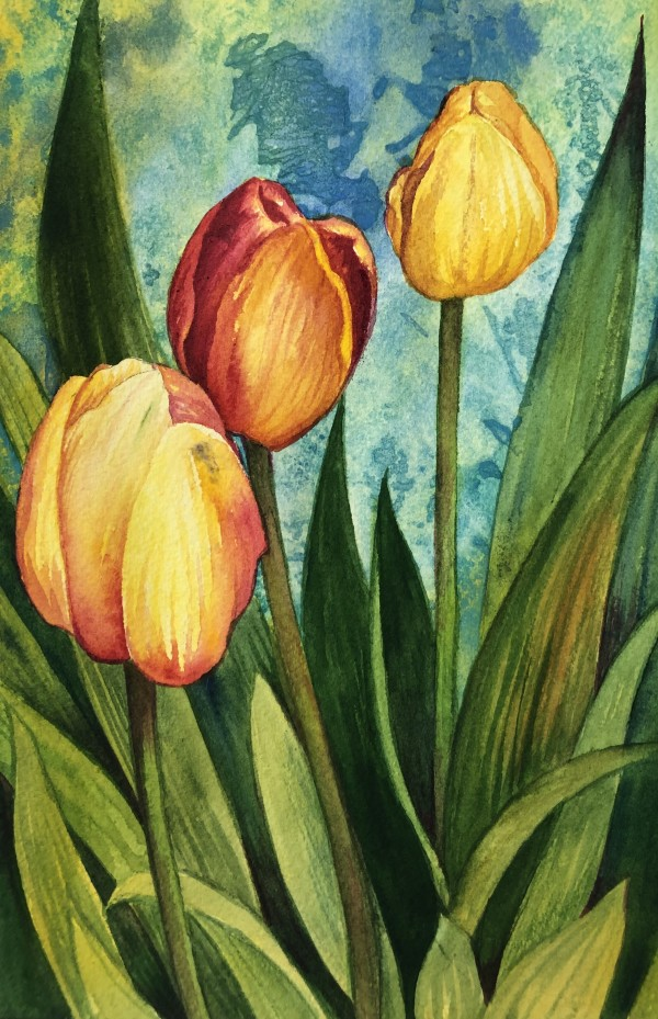 Tulips II by Helen R Klebesadel