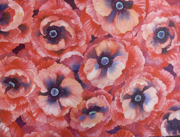 Wall Fiower Poppies by Helen R Klebesadel