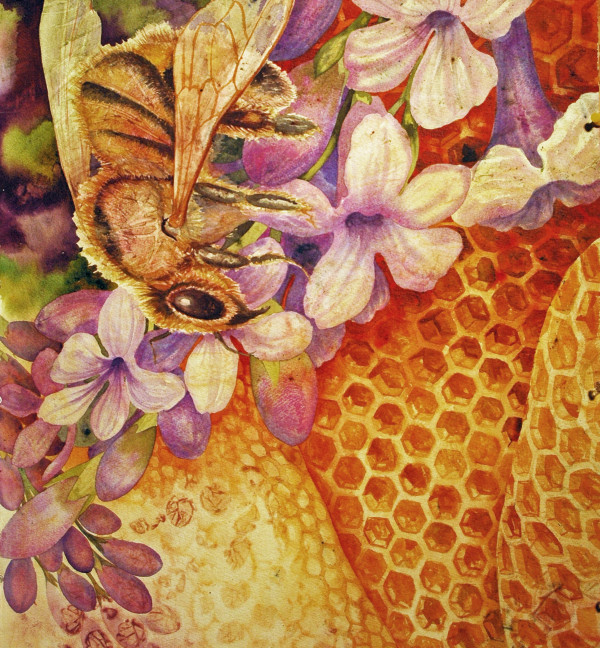 Where Are the Bees V by Helen R Klebesadel