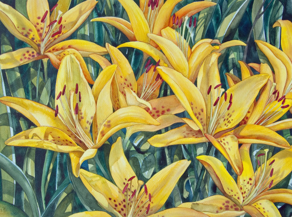 Yellow Lilies by Helen R Klebesadel