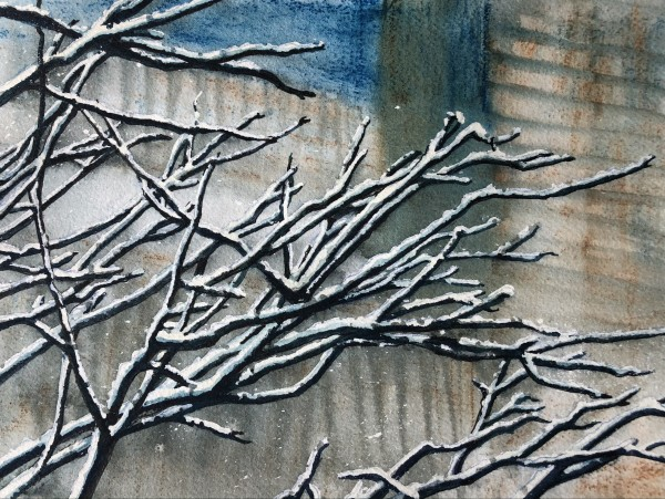 Snow On Branches I by Helen R Klebesadel