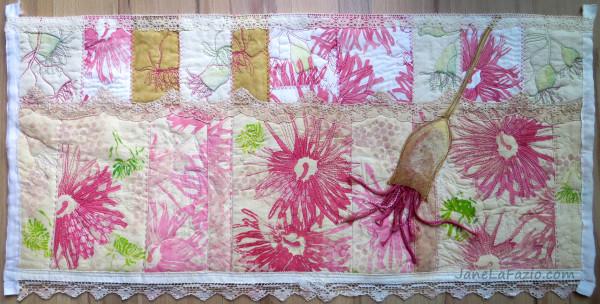 Eucalyptus Blooms by Jane LaFazio