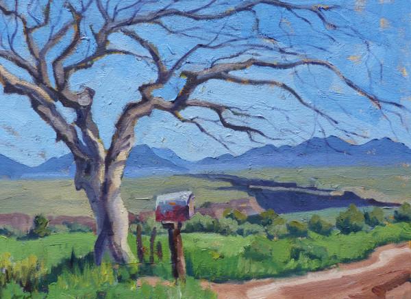 """""""The Iconic Tree"""" by Tatiana Koch"""