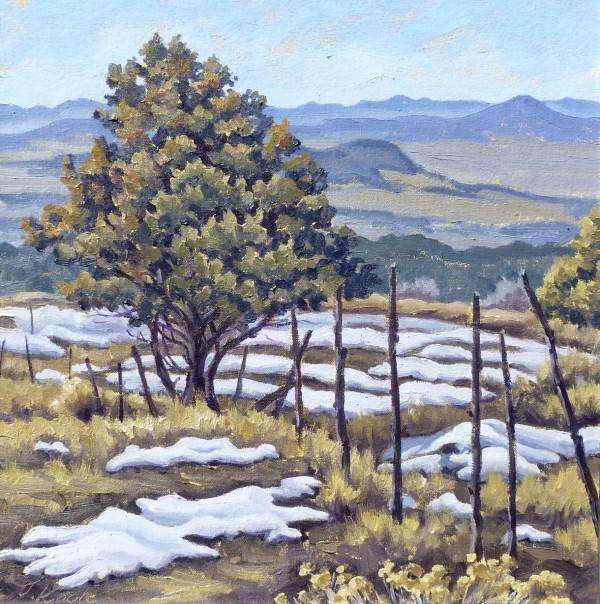 """""""Snowmelt"""" by Tatiana Koch"""