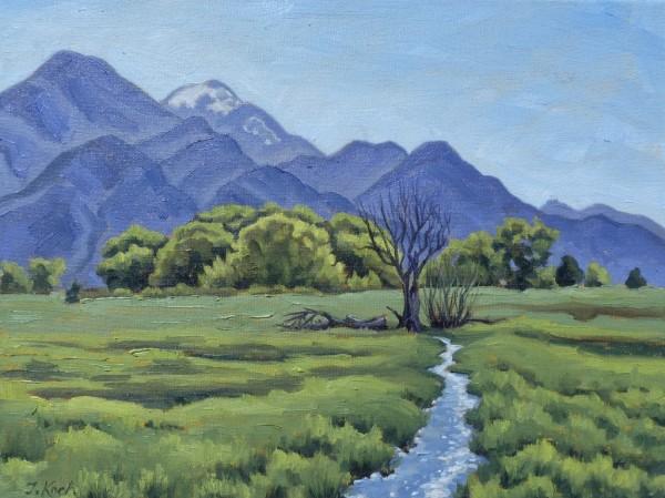 """""""Springtime in El Prado"""" by Tatiana Koch"""