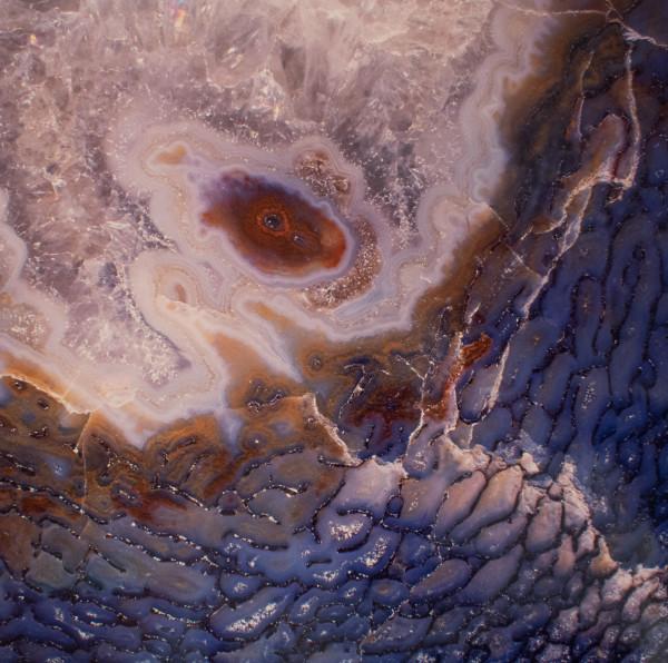 """Dinosaur Bone"" Colorado, USA Jurassic by Giraud Foster & Norman Baker"