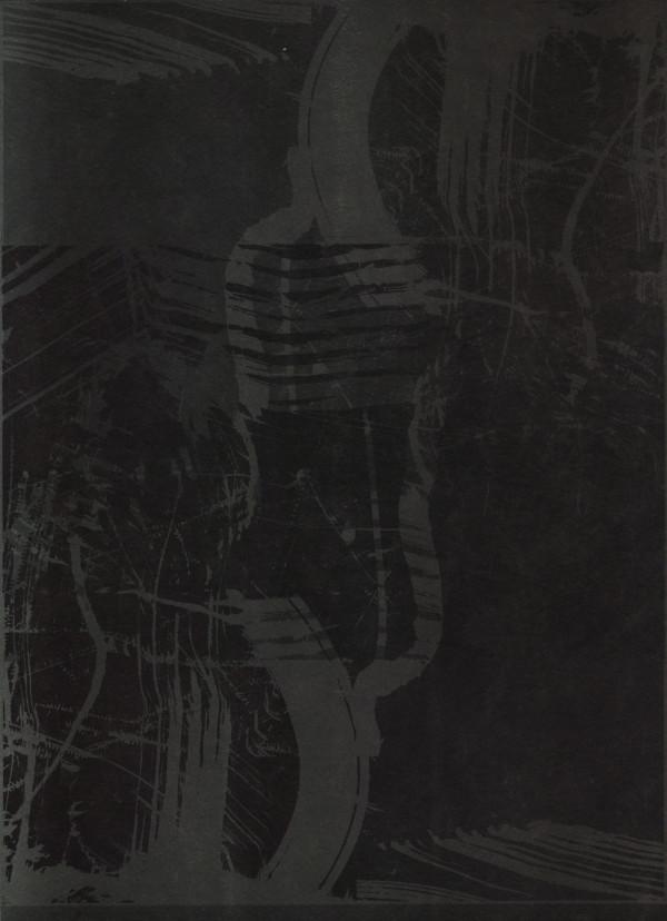 50 Shades Of Black by shih yun yeo