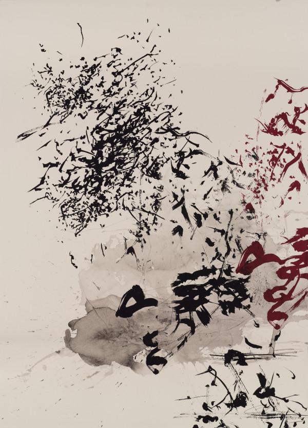 Heritage tree series Saga Tree by shih yun yeo