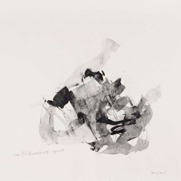 Test #1 Spinellschwarz  by shih yun yeo
