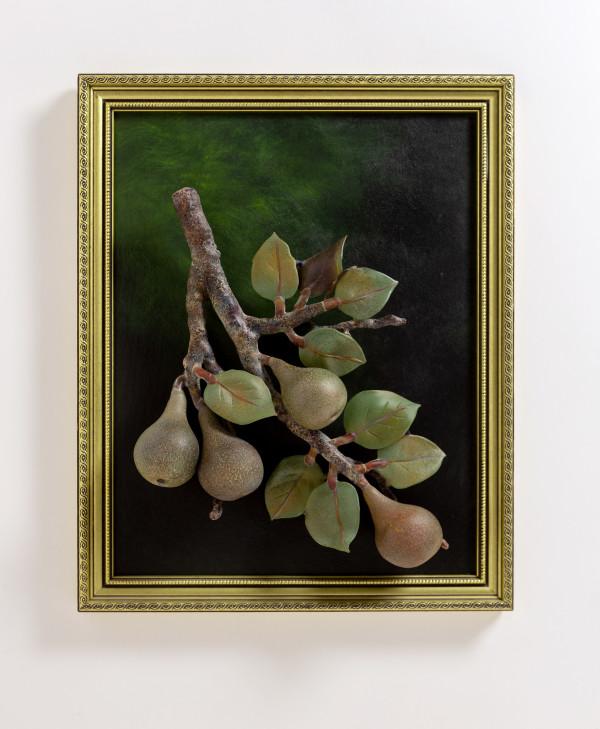 Pears Still Life by Kathleen Elliot
