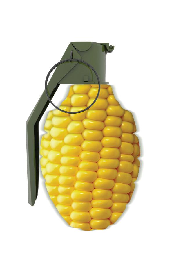 GMO Corn by Kathleen Elliot