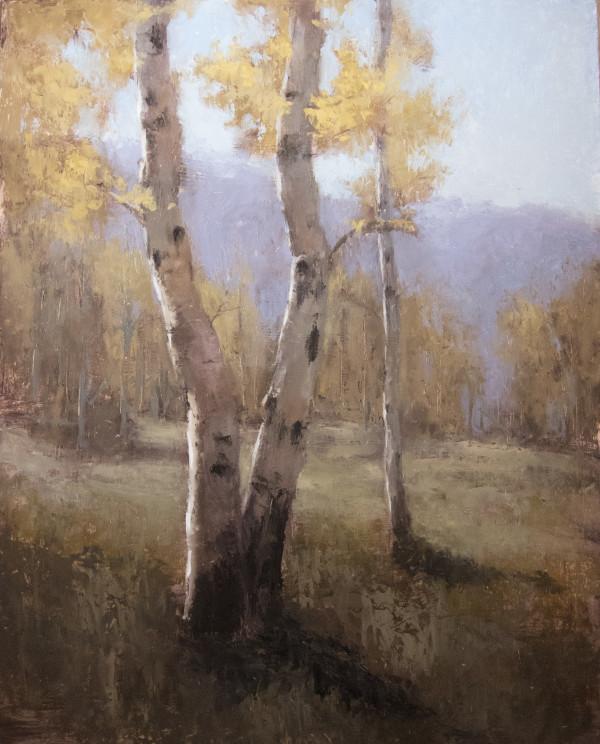 Autumn Aspens by Jane Hunt
