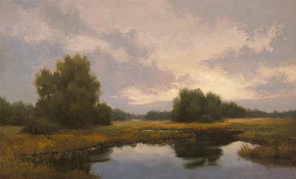Halcyon Days by Jane Hunt