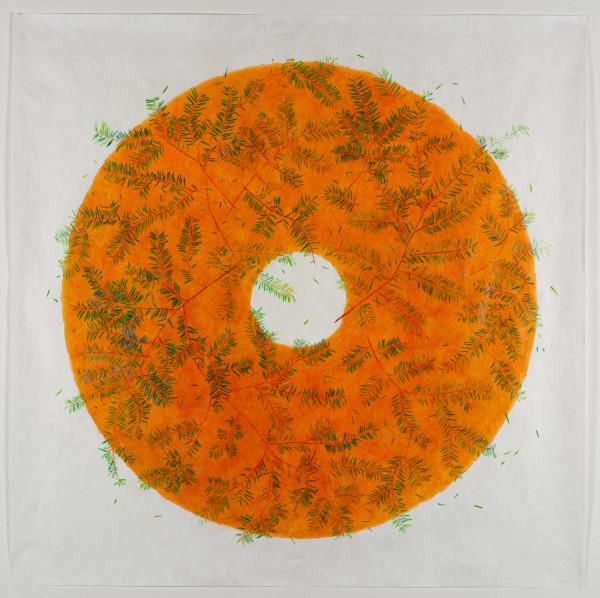 More than Leaves Fallen, Hemlock #2 by Katherine Steichen Rosing