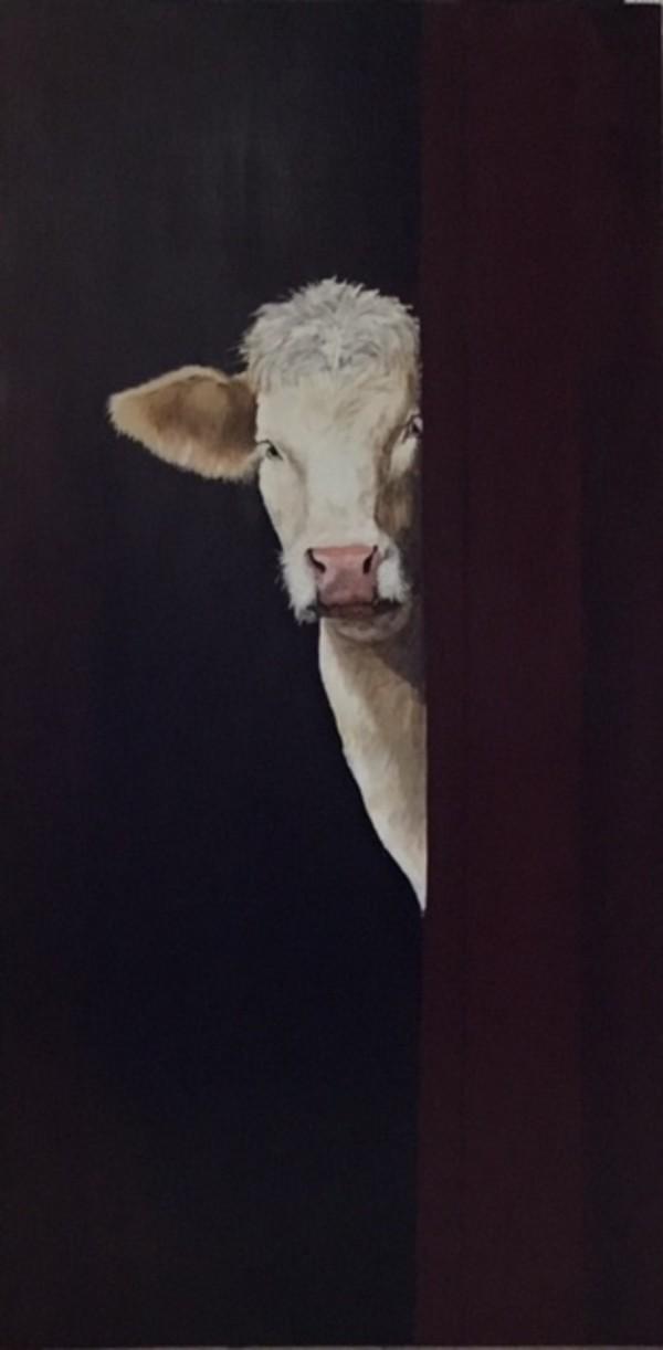 Cattle - Charlotte by Ann A Blake